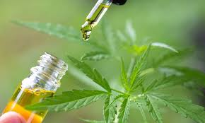 CBD Oil for Muscle Recovery : Cannabis & Pain Relief